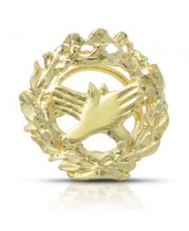 Insignia pin Fisioterapia oro