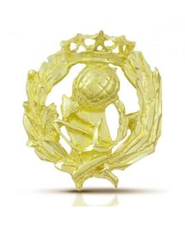 Pin insignia de Magisterio oro